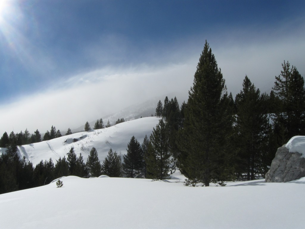 Winter 2013 -2 001